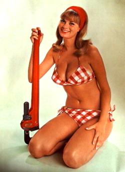 ridgid for Bikini girl