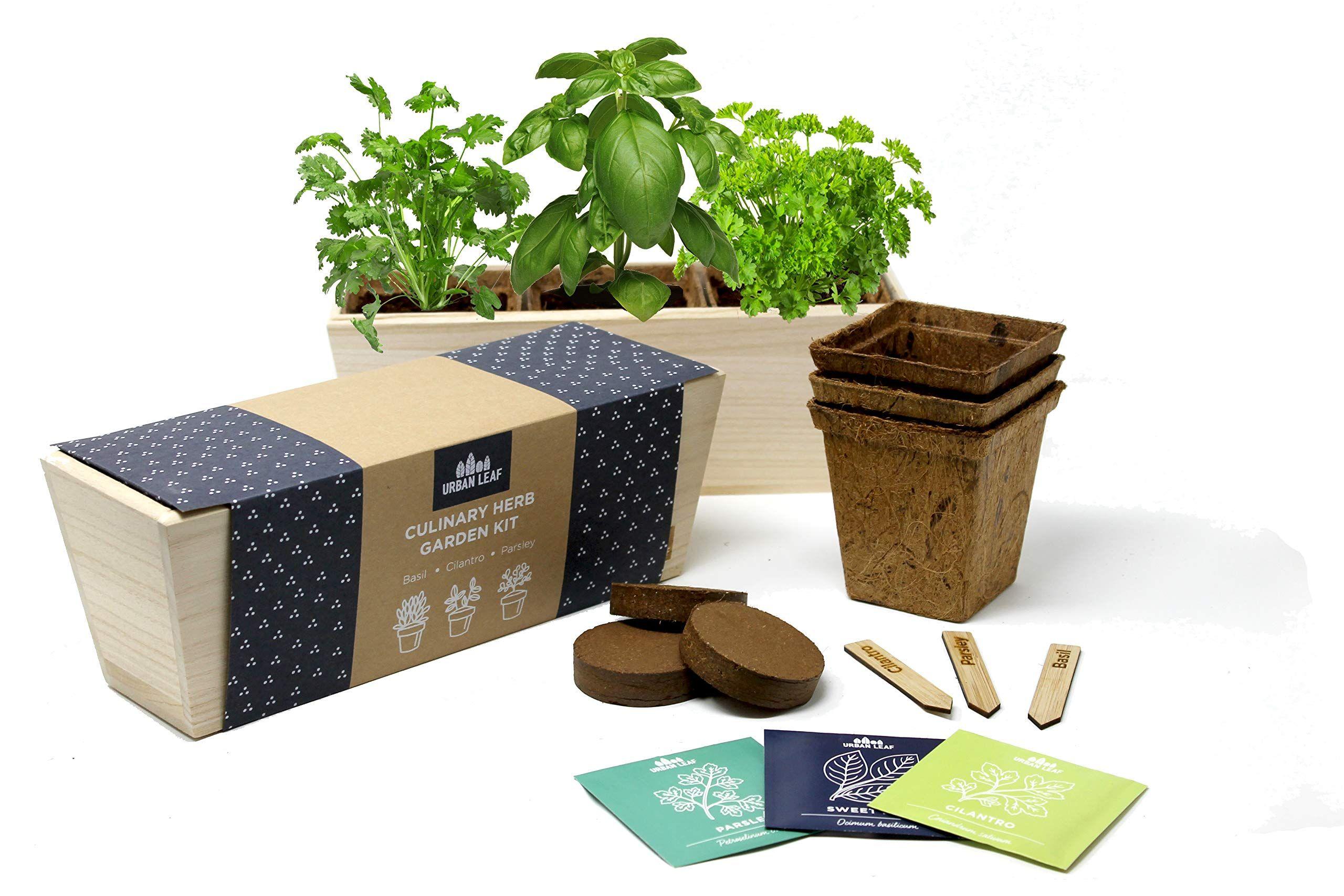 Urban Leaf Herb Garden Starter Kit Beginner Friendly