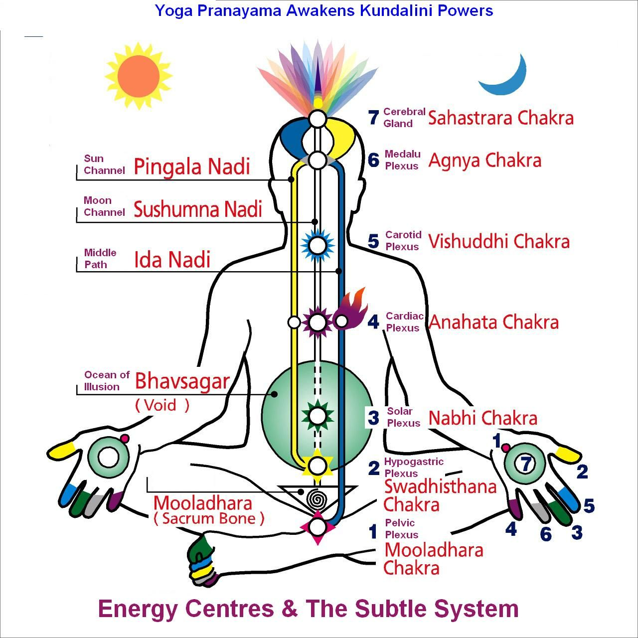 c64887ea21a17c635ced304fd6b24f6d yoga poses for opening root chakra the 8 limbs of yoga what is