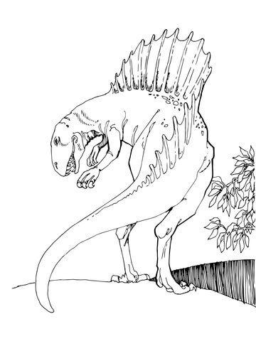Spinosaurus Theropod Dinosaur Coloring Page Dinosaur Coloring