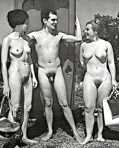 Dinner party orgy 1950s