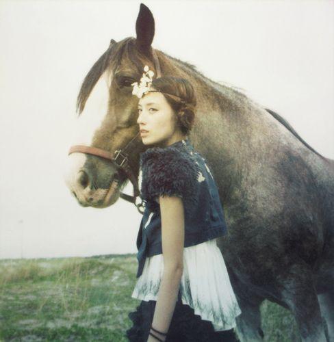 Beautiful horse but the pose looks awkward