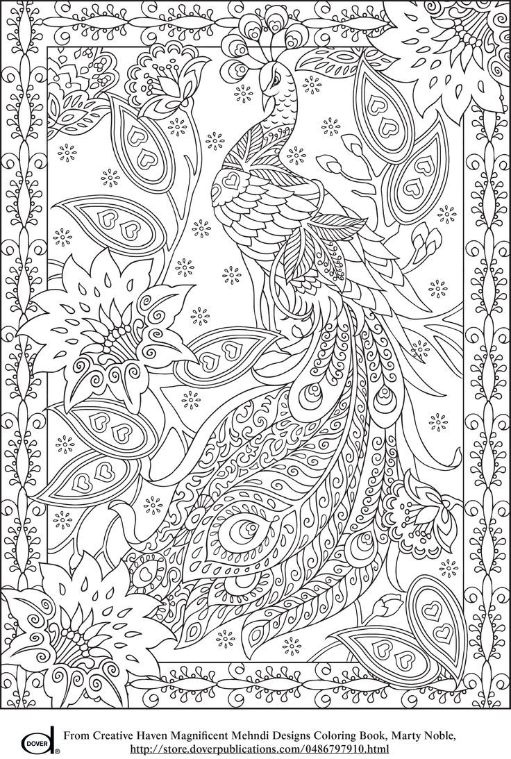 """""""Peacock Adult Coloring Page"""" (quote) via azcoloring.com Several pictures to print and color"""