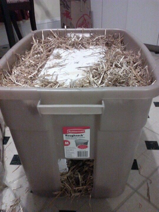 Feral Cat Shelter Styrofoam Cooler Within Plastic Storage Bin Surrounded By Hay With Holes For Entry About To Seal It The Top