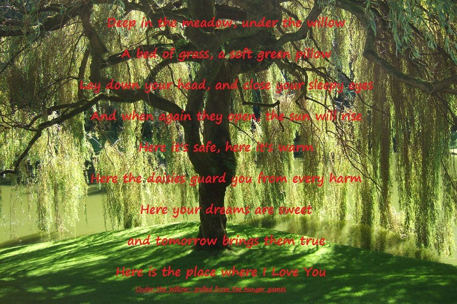 Under The Willow Poem Pulled From The Hunger Games I Put