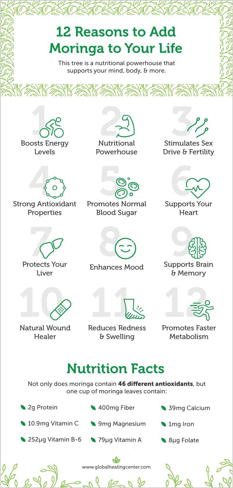 Benefits of Moringa A Nutritional Powerhouse Moringa