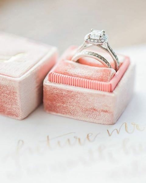 So Fun To See Our Rings In Melissadurhamphoto S Album From Jeanna And Daniel S Wedding Bes Tacori Engagement Rings Pave Band Engagement Ring Engagement Rings