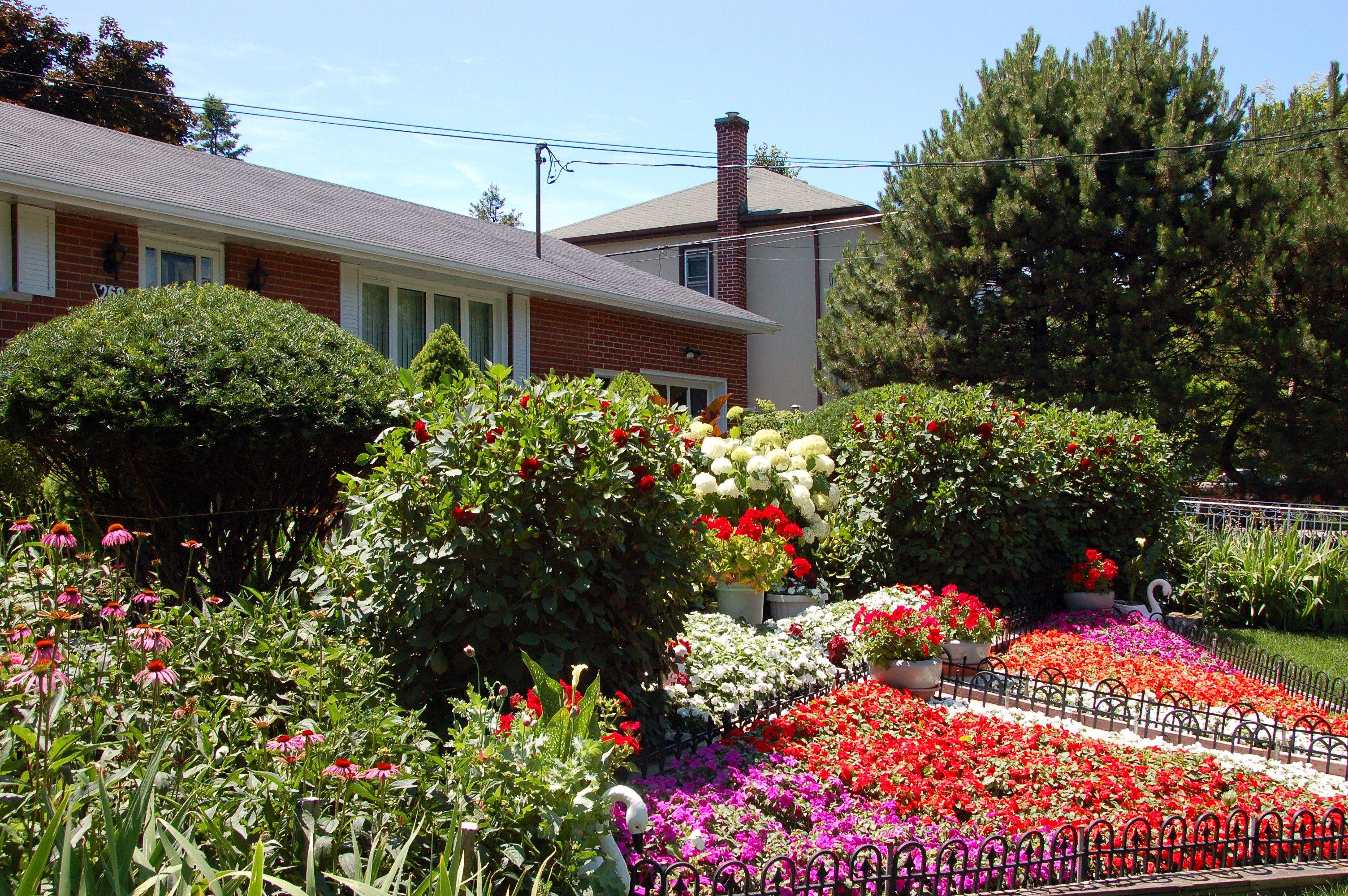 Garden Of Manuel De Sousa Plants Photo Wonder