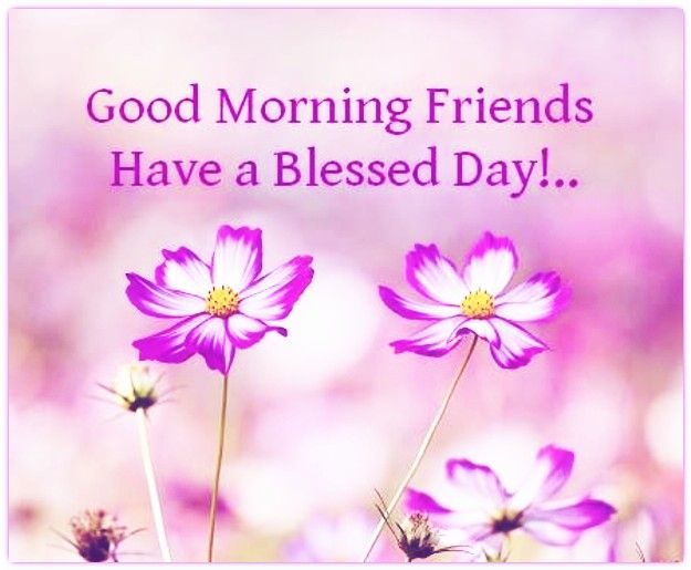 Good Morning Wishes For Friend Pictures, Images - Page 3 ...