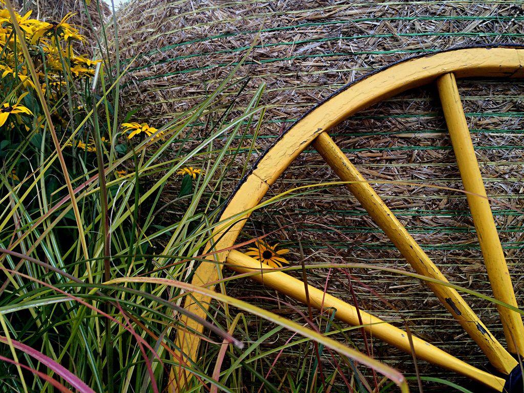 Harvest wheel