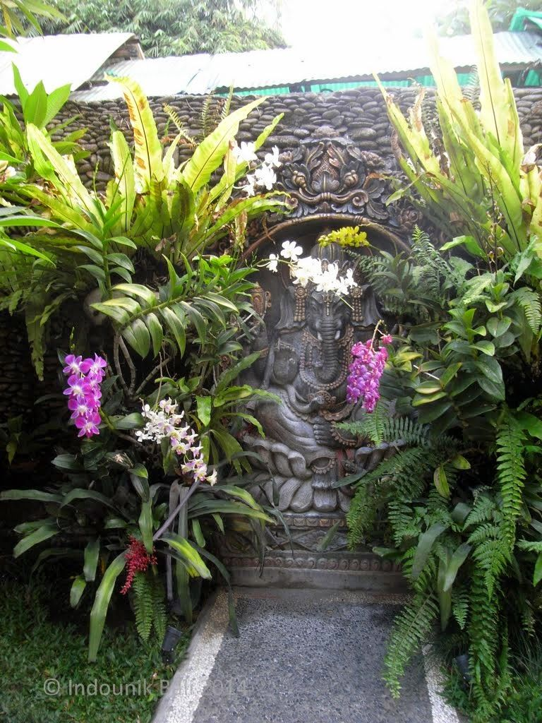 Ganesha amid the orchids in the garden of Ibu Oka's house