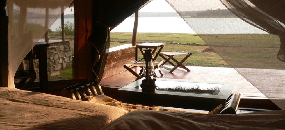 View from Deluxe luxury tent at The Bison Resort Karnataka India & The Bison Wildife Resort Kabini | thebisonresort.com - India ...