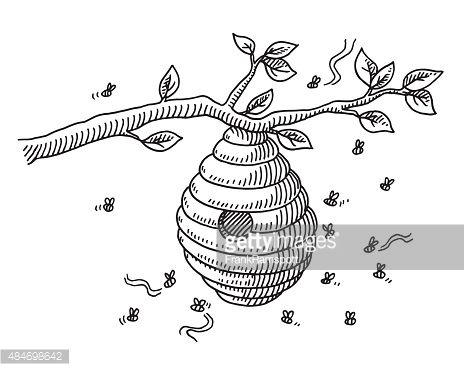 Hand Drawn Vector Drawing Of A Beehive And Flying Bees Bee Drawing Bee Art Beehive Drawing