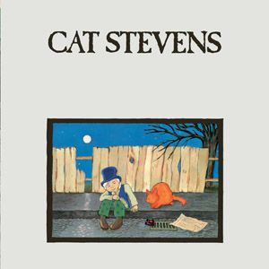 Teaser and the Firecat This was my all time favorite book as a child!
