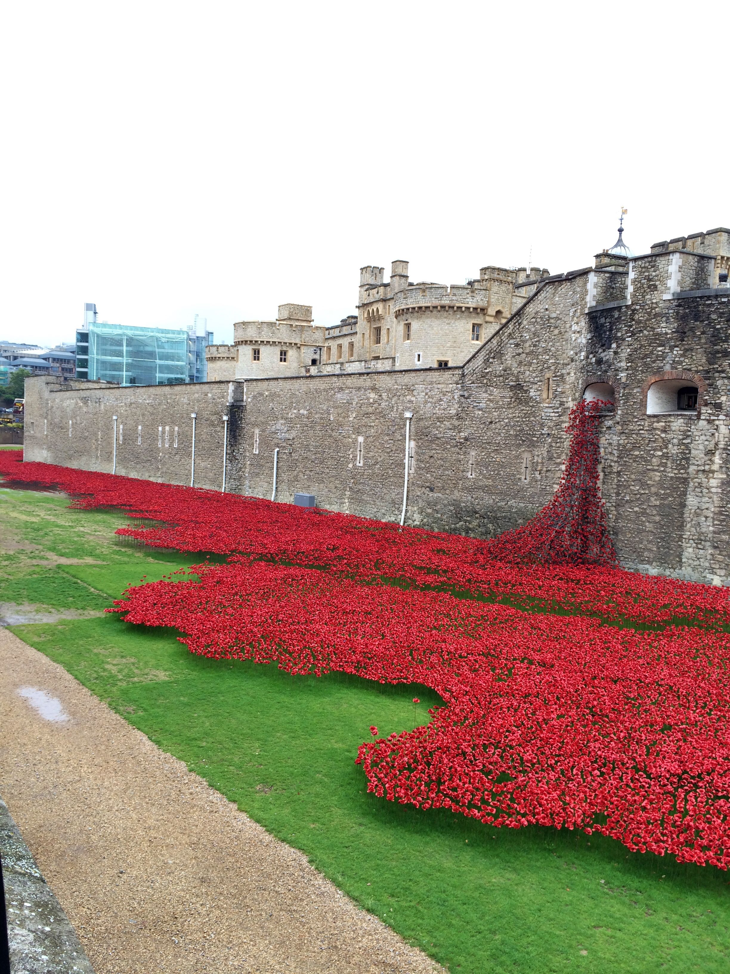 Poppies of Remembrance, Tower of London
