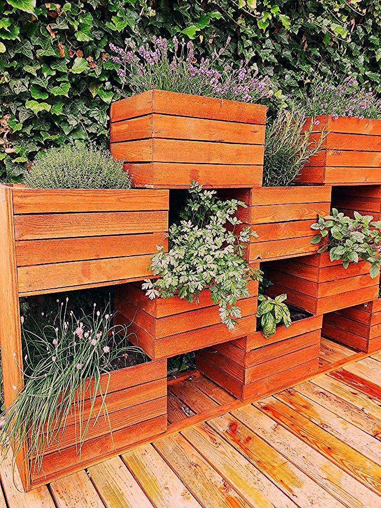 Photo of Vertikaler Garten aus Obstkisten – My Blog