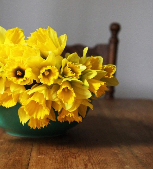 five ways to celebrate the first day of spring | the neighborhood