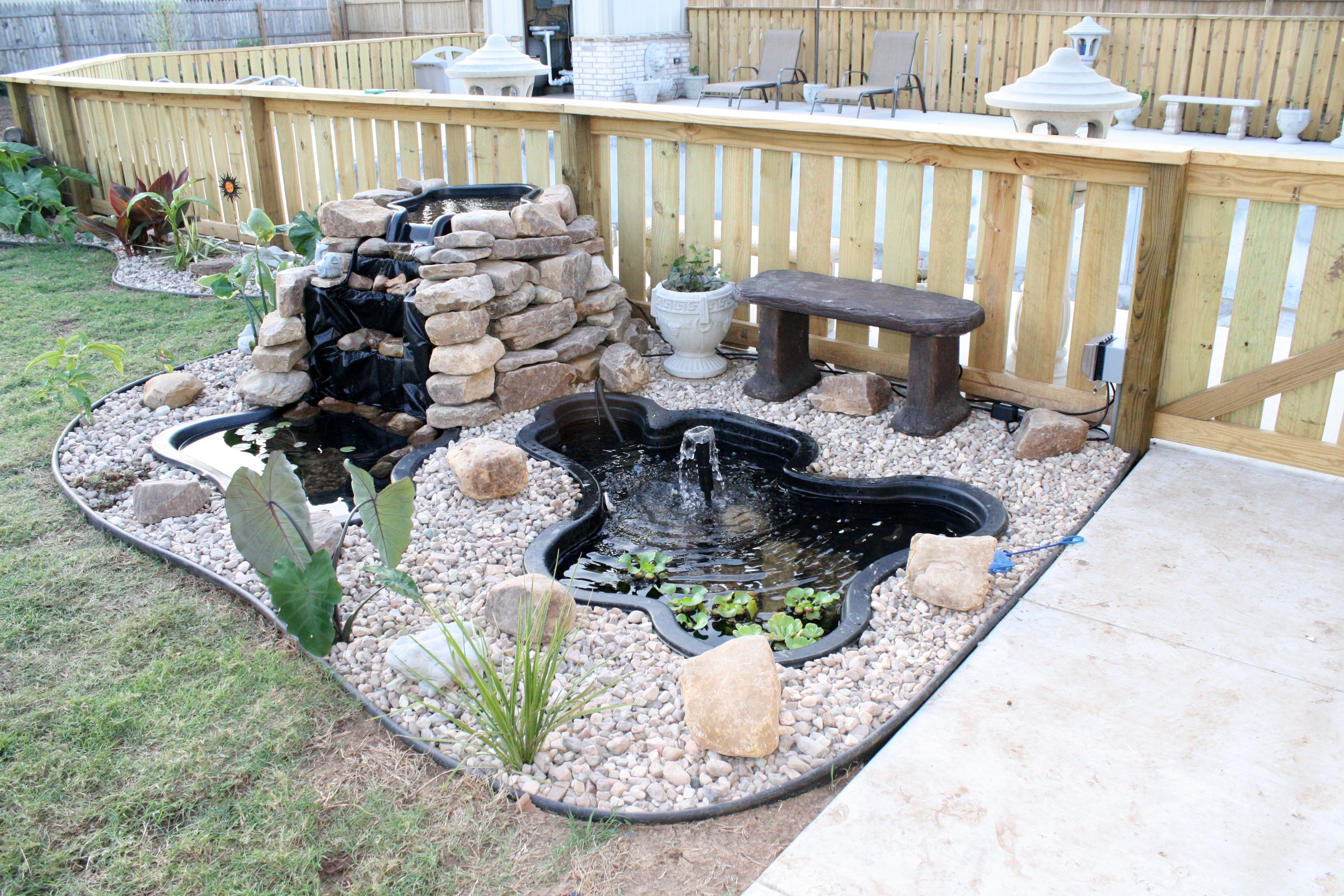 Backyard fish pond my garden pinterest fish ponds for Backyard fish pond designs