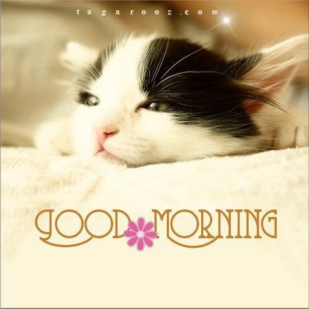 Pin on Good Morning - good day wishes