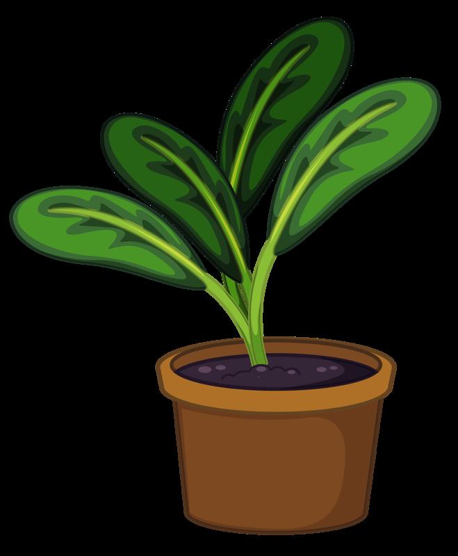 Flower Pot 12 Png Tanaman Pot Bunga Tanaman Pot
