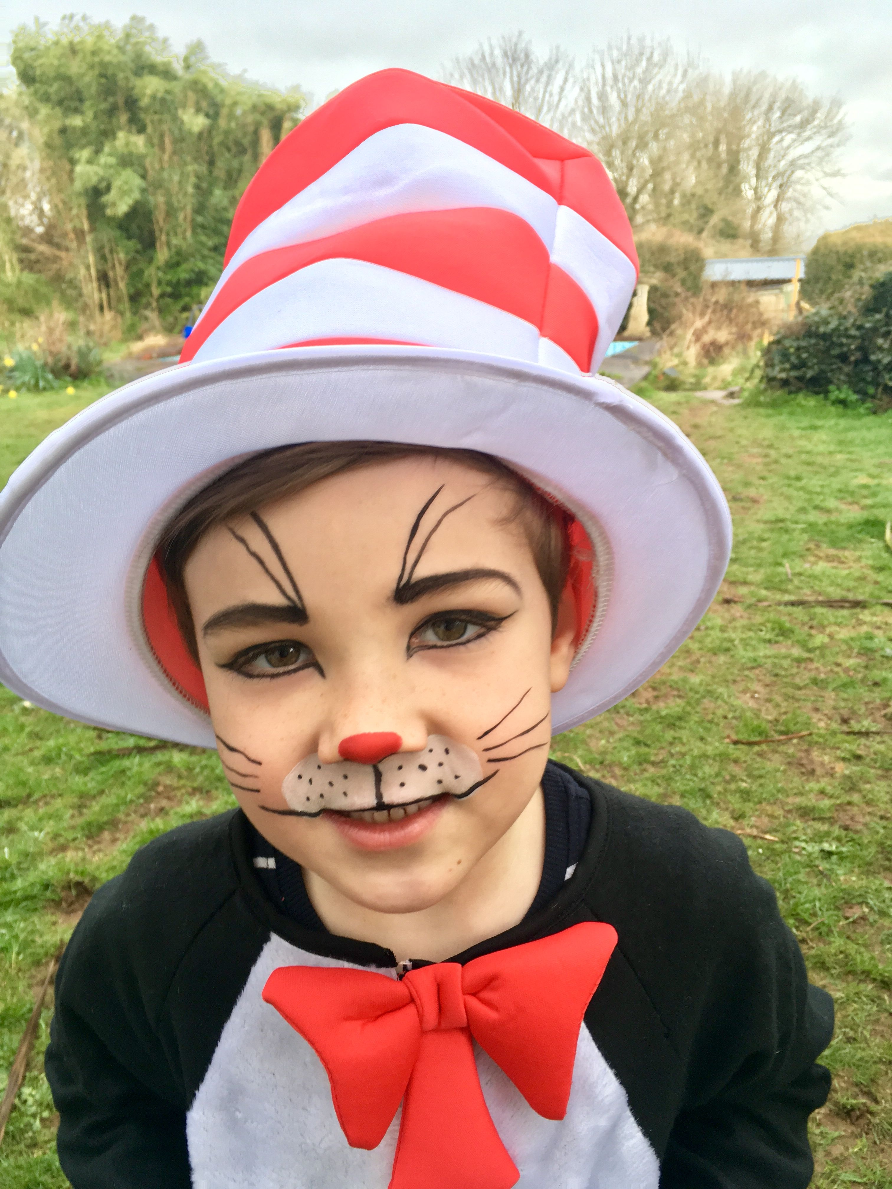 Clown Schminken Suess World Book Day 2018 Cat In The Hat Dr Seuss Costume Face Paint