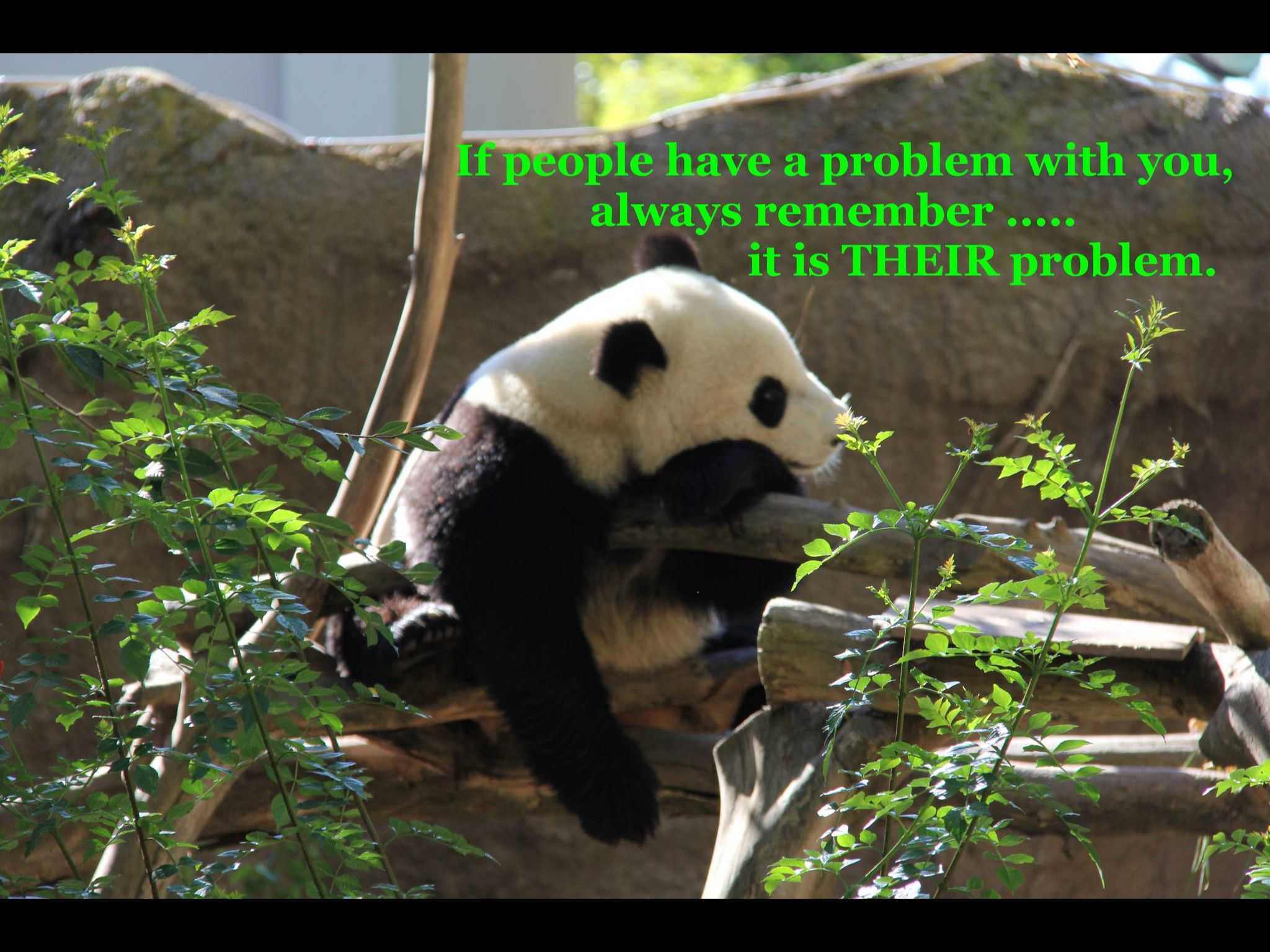 If people have a problem with you, always remember - it is THEIR problem.