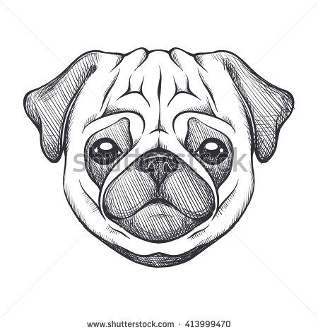 Cute Pug Portrait Of Dog In Sketch Style Hand Drawn Vector