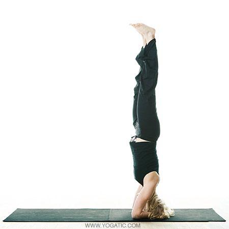 sirsasana  yoga inversions yoga poses easy yoga poses