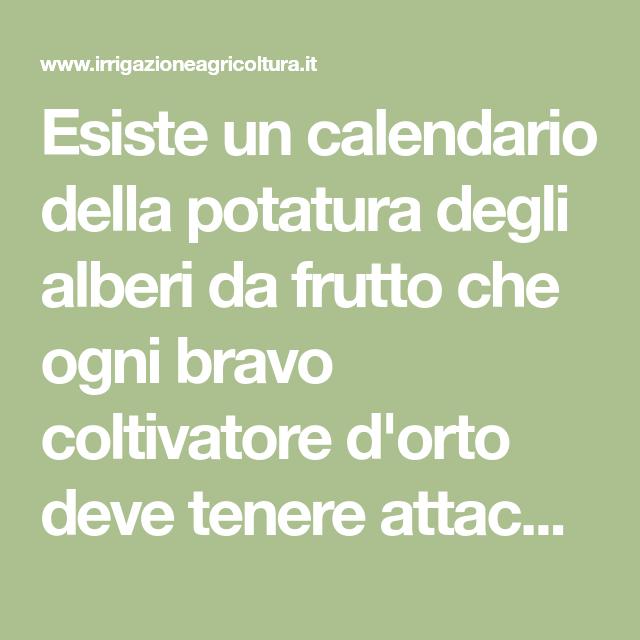 Calendario Potatura Piante.Esiste Un Calendario Della Potatura Degli Alberi Da Frutto