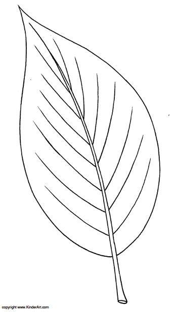 Ash Leaf Coloring Page Kinderart Com Leaf Coloring Page Leaf