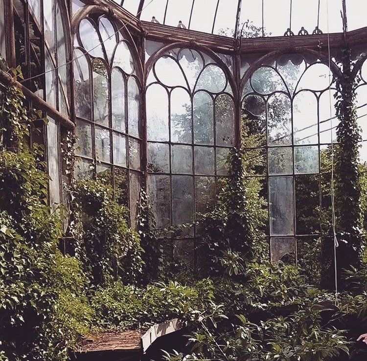 Beautiful abandoned greenhouse, which is part of the Chateau Rolls Royce abandoned castle, Belgium. Escena, Castillos Abandonados, Abandoned Buildings, Lugares Abandonados, Mansiones Abandonadas, Abandonado, Invernaderos, Lugares Hermosos, Buenos Culos