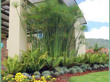 Fotos de jardines peque os para casas interiores for Modelos de jardines interiores