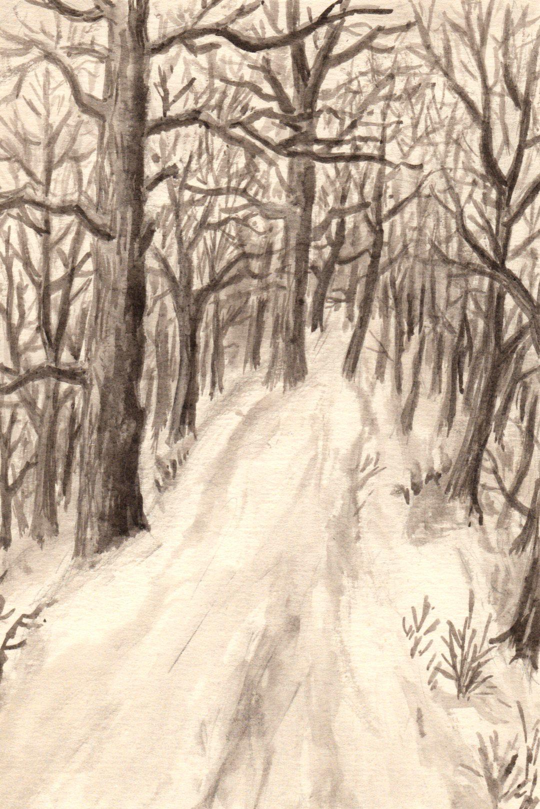 Z Obory Ve Veltrusich Kresba Jana Haasova Trees Rocks Plants