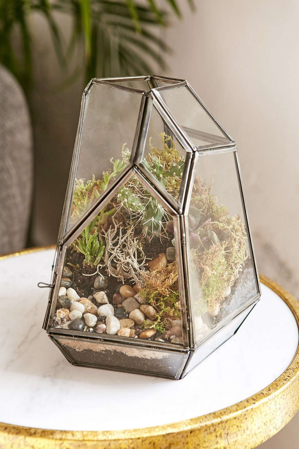 Magical Thinking Smoked Glass Terrarium - Urban Outfitters #UOContest #UOonCampus