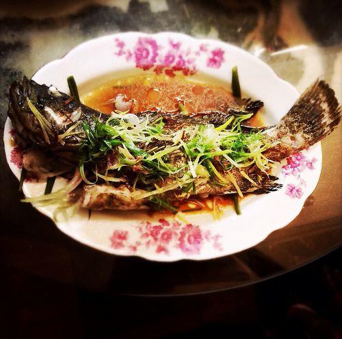 Chinese fish garoupa hong kong recipe steamed chinese fish garoupa hong kong recipe steamed forumfinder Images