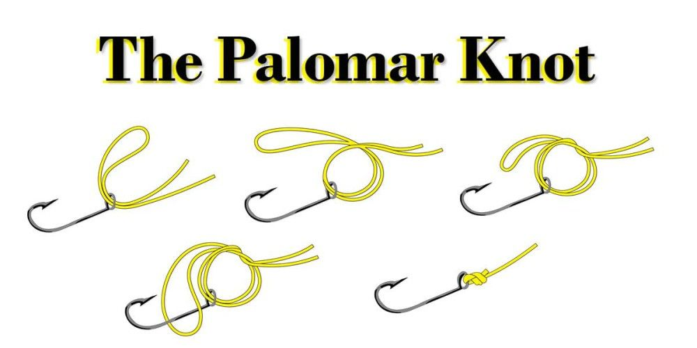 The palomar knot how to in 5 steps 1000 500 for How to tie fishing line together