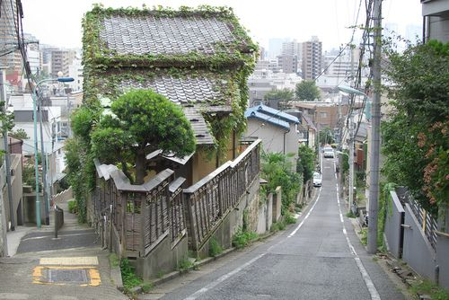 東京路地裏散歩 目白台の富士見坂 Mejirodai, Bunkyo city, Tokyo