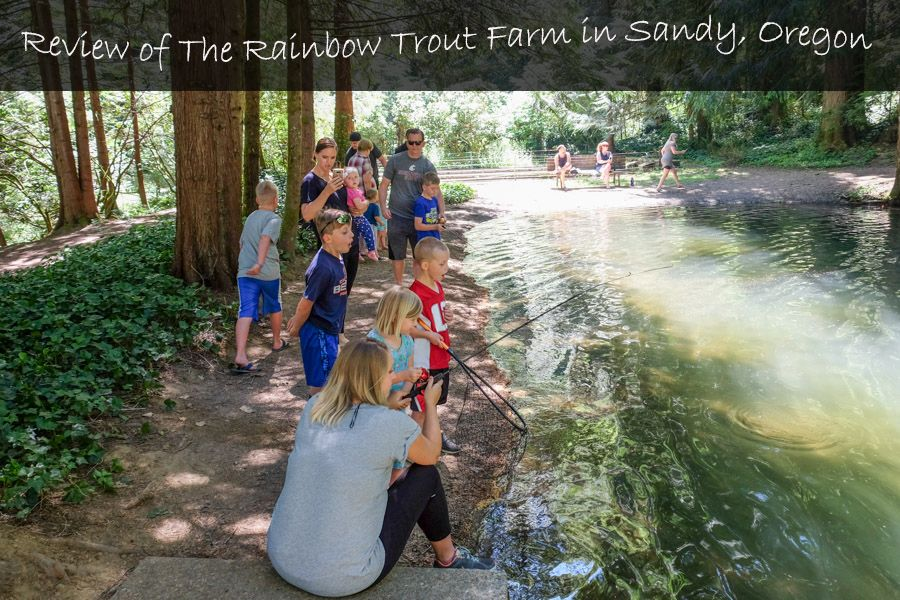 Family Review Of The Rainbow Trout Farm In Sandy Oregon Travel Oregon Fishing Familytravel Trout Farm Oregon Fishing Oregon Life