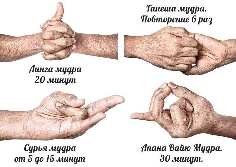 гружу что мудры и их значения с картинками николаевич, являясь одним