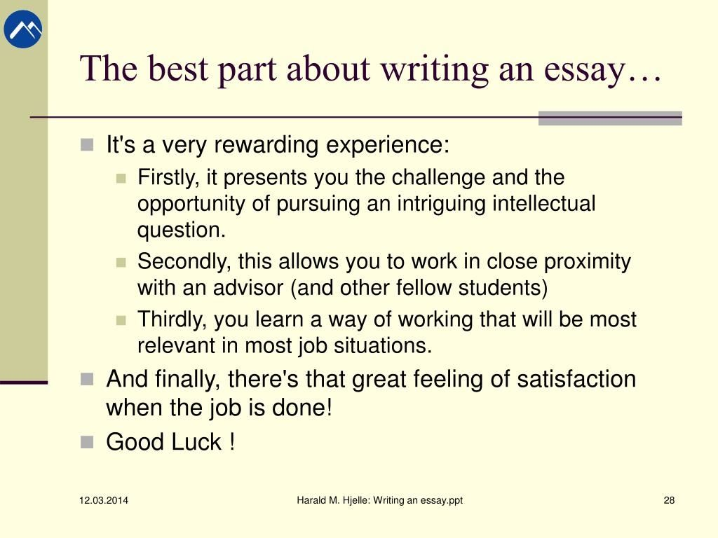 Term Paper Writers - Custom Essay