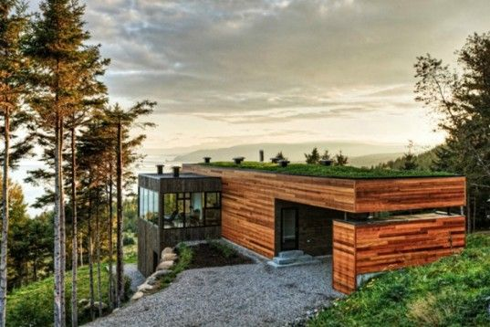 Grass roof and wood panel match well together