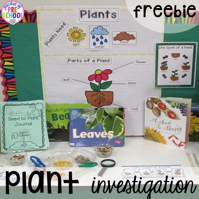 Spring Activities And Centers For Preschool Pre K And Kindergarten Pocket Of Preschool Spring Activities Spring Preschool Spring Kindergarten Preschool literacy activities for plants