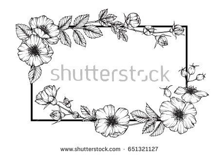 Flower Frame Of Rose Floral Drawing And Sketch With Black