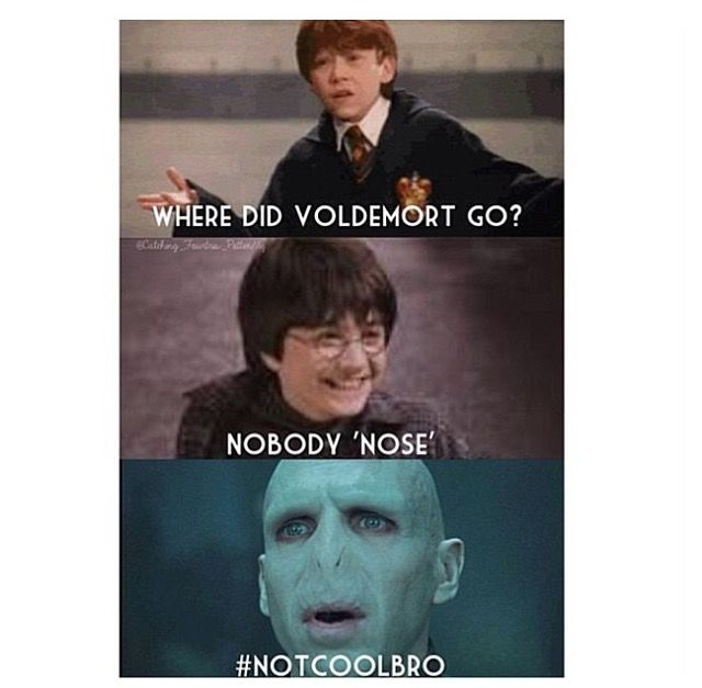 Pin By Merritt Johnson On Harry Potter Harry Potter Memes Hilarious Harry Potter Funny Pictures Harry Potter Images