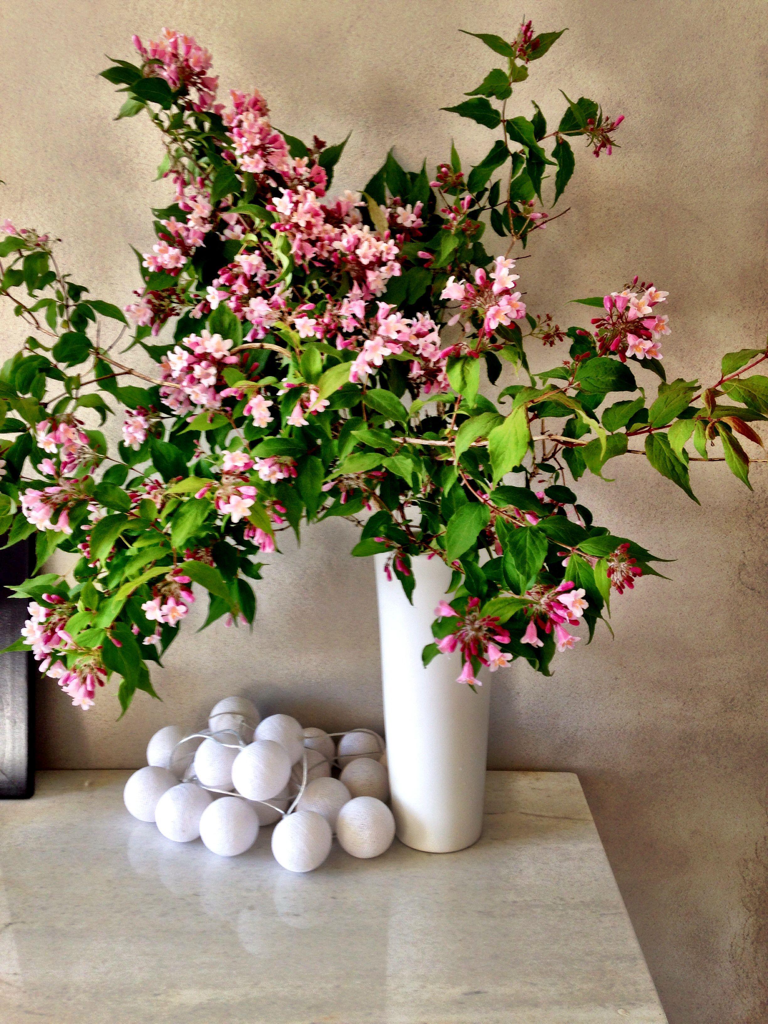 Blomster fra hagen