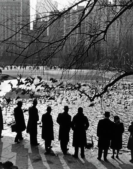 Andreas Feininger - An American Sunday, Central Park, N.Y.C.