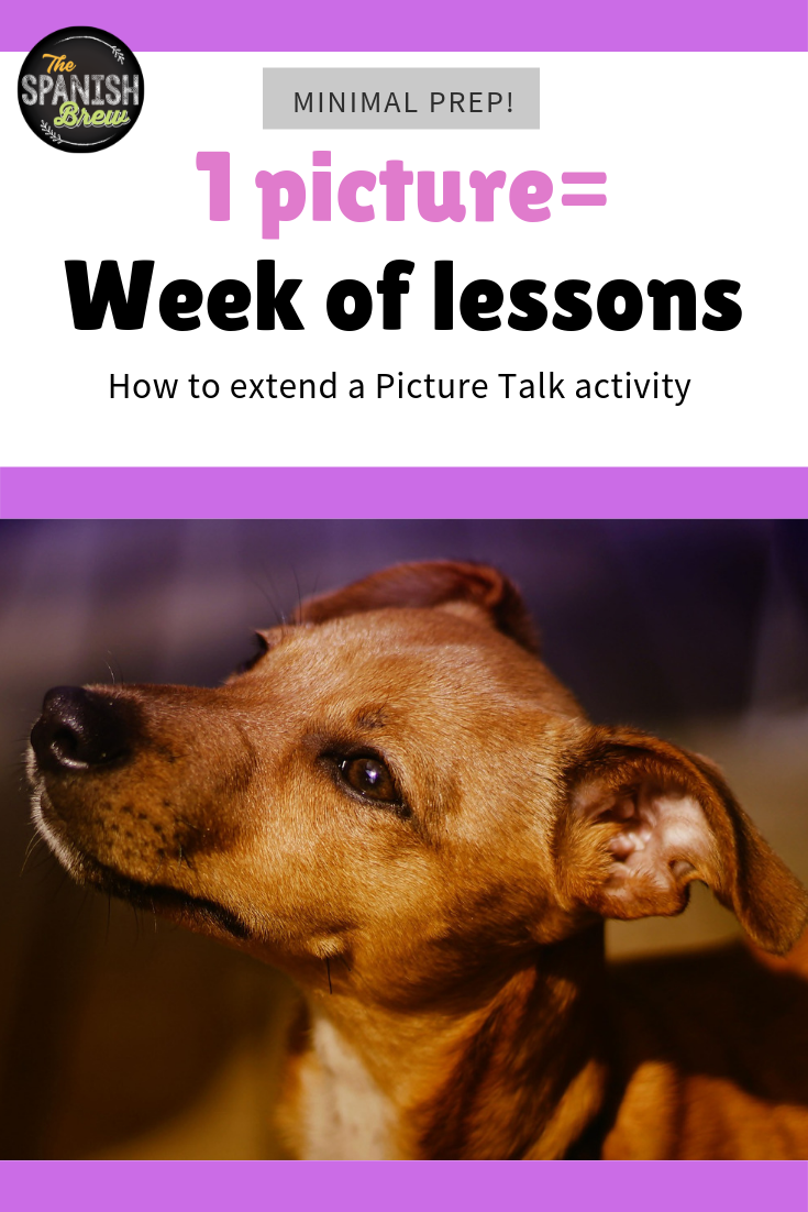Secrets That Will Make You Use Picture Talk Activities Spanish