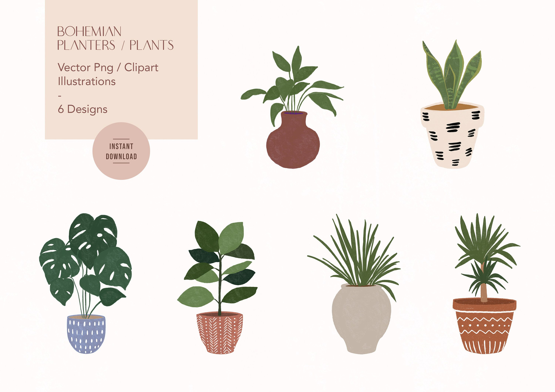 Bohemian Plants Vector Illustrations Clipart Png Graphics Etsy Hand Art Drawing Plant Vector Vector Illustration