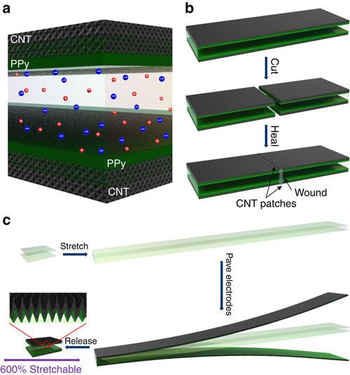 Self-healing, highly stretchable supercapacitor based on a