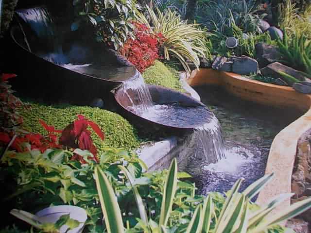 Tropical Garden With Water Feature Curated By Blue Valley Aquatic Landscapes 300 Sigalet Road Lumby Bc V0e 2g6 250 547 2525